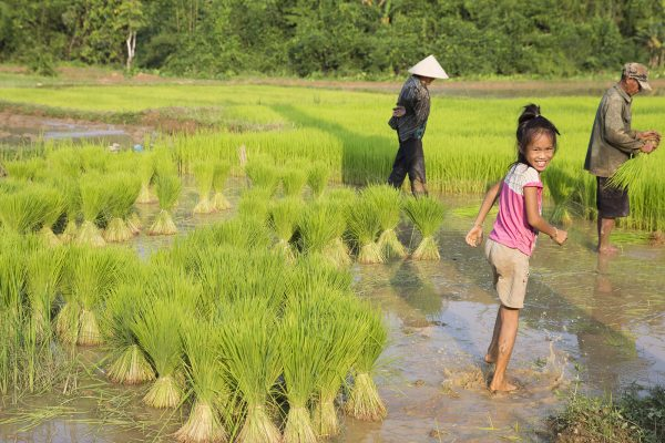 Travel - Laos (GIT)