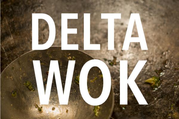 DeltaWok_Wok