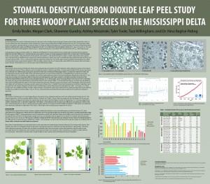 CO2-Stomata-Study-FINAL-cs3